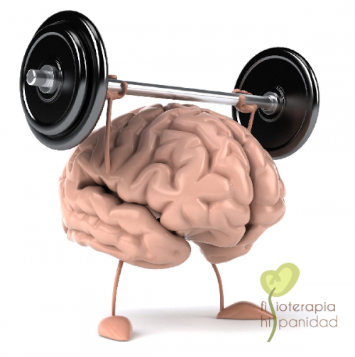 fisioterapia-neurologica-fuengirola-e1614510200493.png