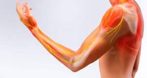 Movimientos fundamentales fisioterapia
