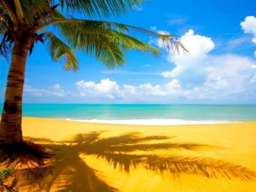 Si tengo dolores de espalda, lumbalgias, ¿podría tumbarme en la playa?