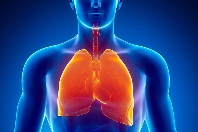 problemas-respiratorios.jpg