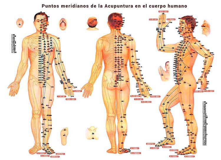 puntos-meridianos-en-acupuntura.jpg