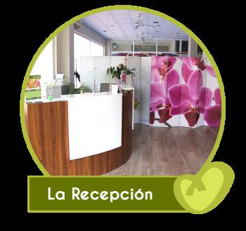 recepcion-fisioterapia-hispanidad-e1614509709356.png
